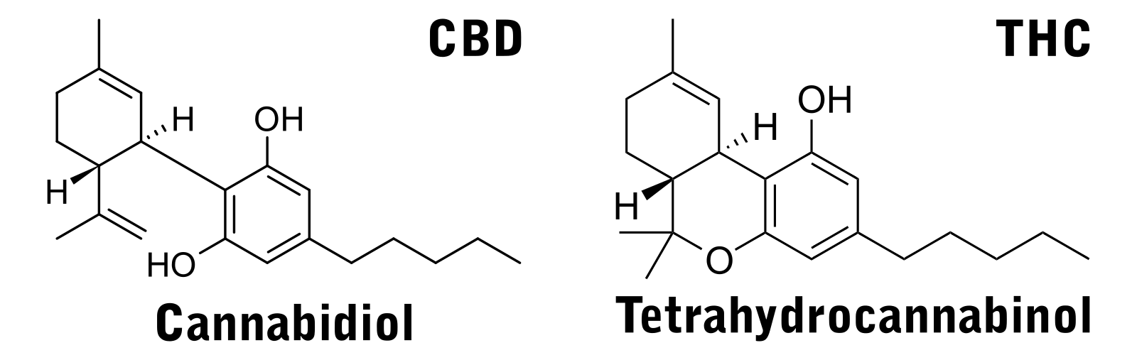 2D Structure shows the chemical differences between CBD and THC